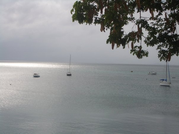 vieques serenity
