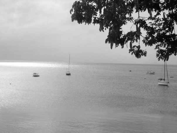 vieques serenity (2)