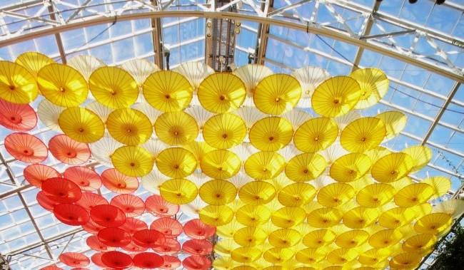 umbrellas (2)