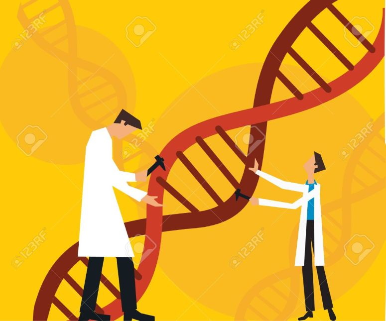 9688663-Two-scientists-fixing-dna-Stock-Photo-dna-science-cartoon