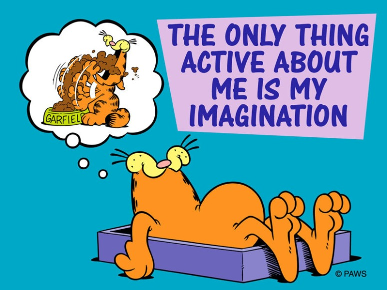 Garfield-Speaks-the-Truth-imagination-9595471-800-600