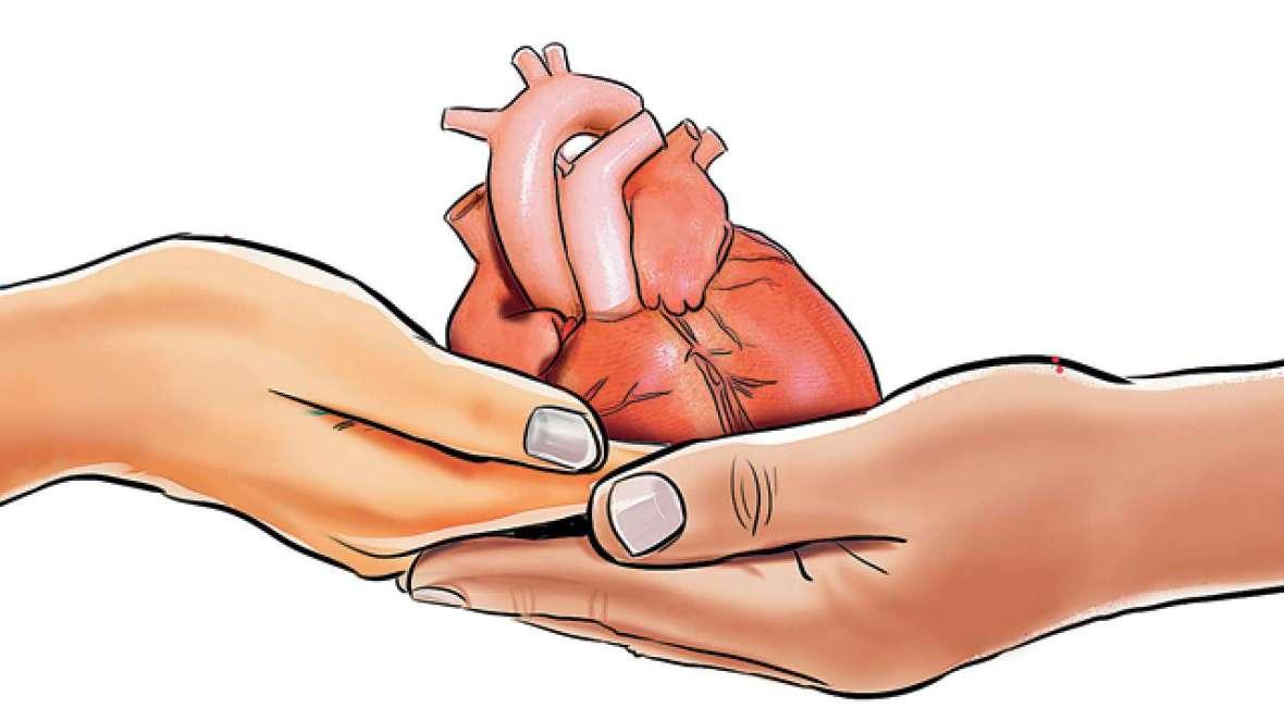 628426-organdonation