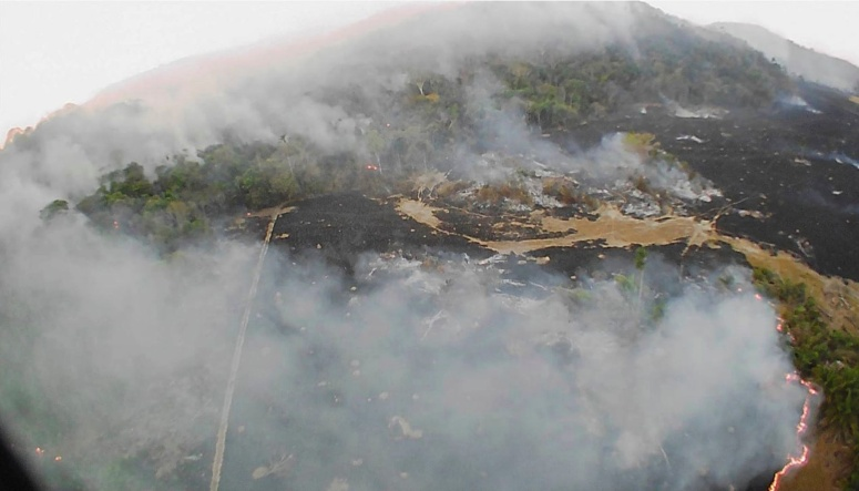 Environment, Guaranta do Norte, Brazil - 20 Aug 2019